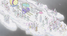 O Conto da Princesa Kaguya – Trilha Sonora Original, 2013